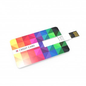 USB Stick Credit Card